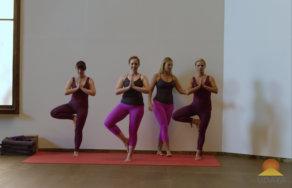 staff pose / dandasana  udaya yoga  fitness