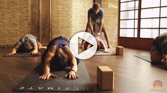 Yoga Foundations 2 with Travis Eliot