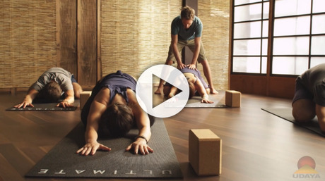 Yoga Foundations 2